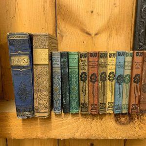 bookcase-old-books