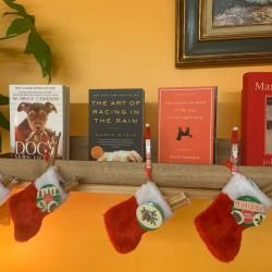 book-Christmas on the Pond
