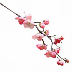 Cherry Blossom Sprig